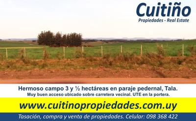 Hermoso Campo 3 1/2 Has. Hay Ute. Financio