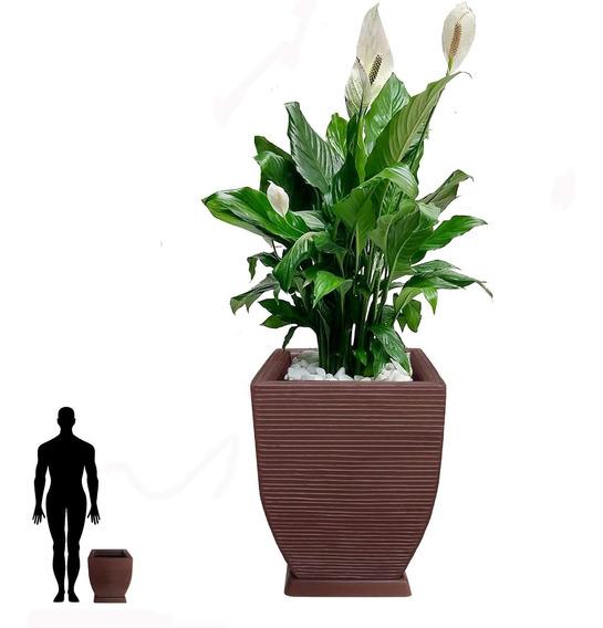 1 Vaso De Planta + Prato De Resina De Polietileno T 45x35 Cm