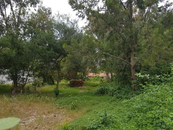 Terreno Cercado En Pinar Sur A 3 De La Playa Y 3 Del Arroyo