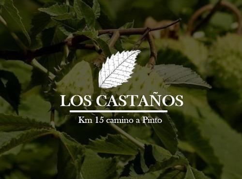 Imagen 1 de 8 de Parcelación Los Castaños Km 15 Camino A Pinto