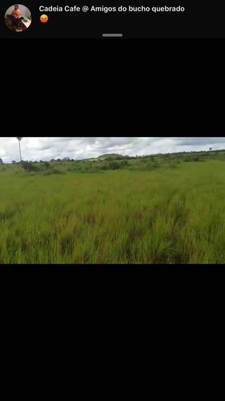 Excelente Fazenda Em Guripe Tocantins Permuta Por Fazenda E