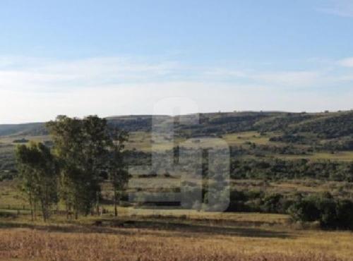 Imagen 1 de 4 de Tacuarembo 1.350ha (ganadero)