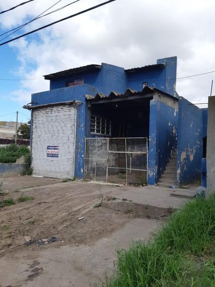 Planta Apta Para Procesamiento De Pescado En Mar Del Plata.-