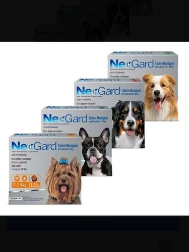 Nexgard Pastilla Antipulgas Y Antigarrapatas Para Tu Mascota