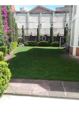 Rento Bonito Jardín Para Fiestas Infantiles Y Eventos Social
