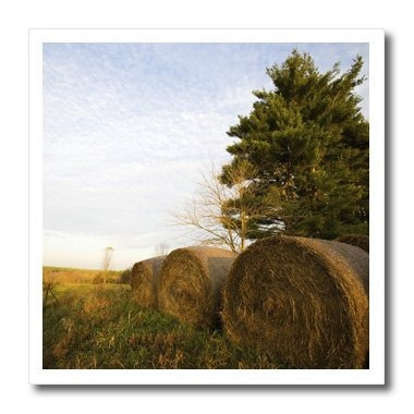 3drose Ht_90847_2 Hay Bales On A Farm In Groton, Maus22 Jmo0