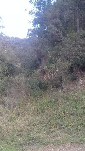 Venta De Terreno En Bosques De Monterreal Enclavado En La Sierra De Arteaga
