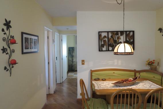 Lindo Apartamento Para Venda Ou Locação. Roberto 64039