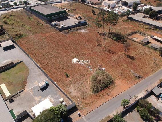 Área 5.000 M²   Setor Chácaras São Pedro   Aparecida De Goiâ - Vendaar56414