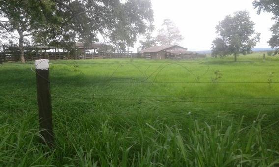 Fazenda Para Venda Em Corumbá, Fazenda Zona Rural Corumba//ms R$ 26.000.000 - 36636_2-866957