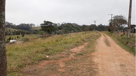 Sítio Para Venda Em Atibaia, Área Rural De Atibaia, 1 Banheiro - 0081