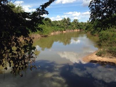 Fazenda Em Floresta Do Araguaia - Pa, P/ Agricultura - 301