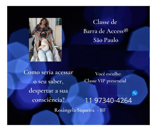 Curso De Barra De Access®  Com Certificação Internacional
