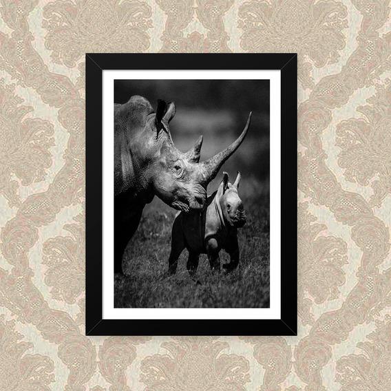 Quadro Rhino Family 23x33cm