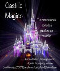Walt Disney World - Disney Planner/ Agente De Viajes