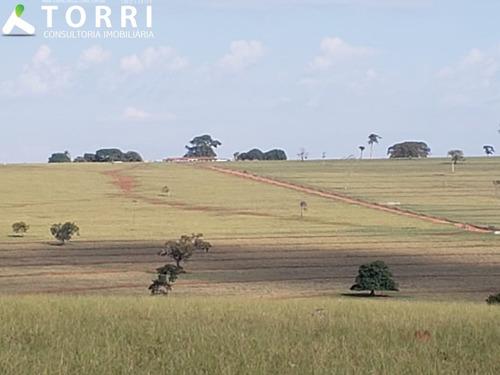 Fazenda Em Anaurilândia Ms - Fa00062 - 68121734