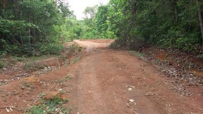 Fazenda A Venda Em Araguacema - To (agricultura) - 507