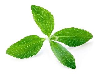 Extracto De Stevia 100 Cápsulas (1 Envase)