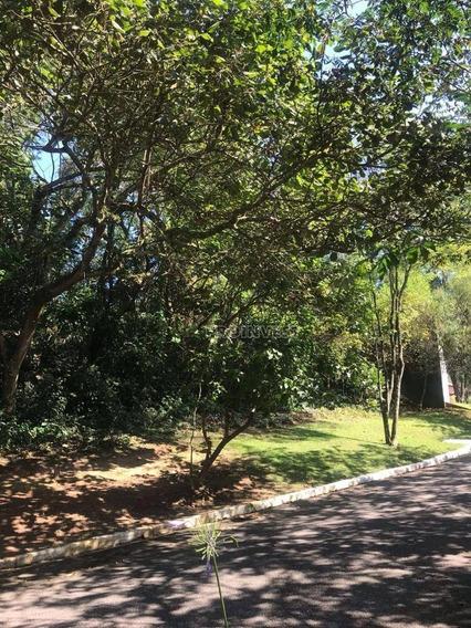 Terreno À Venda, 1000 M² Forest Hills - Te8230