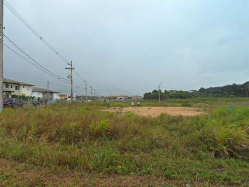 Imagem 1 de 9 de Terreno - Venda - Centro - Peruibe - Mcb471