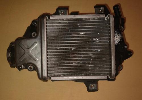 Imagem 1 de 2 de Radiador Honda Pcx 150