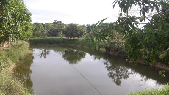 Chácara À Venda, 60000 M² Por R$ 550.000,00 - Zona Rural - Santo Antônio Do Leverger/mt - Ch0042