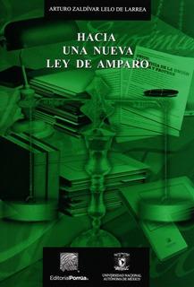 Libro Hacia Una Nueva Ley De Amparo Editorial Porrua
