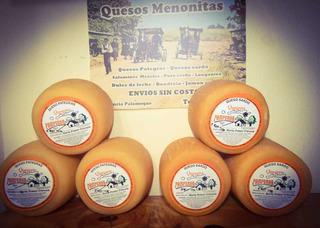 Quesos Menonitas Pategras /sardo