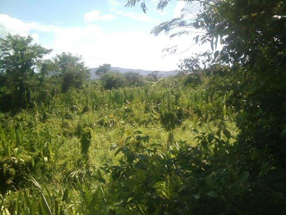Ocasión Remato Terreno Agrícola Maderero