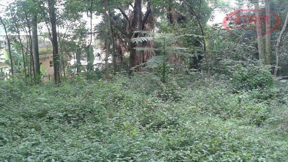 Terreno Residencial À Venda, Horto Florestal, São Paulo - Te0052. - Te0052