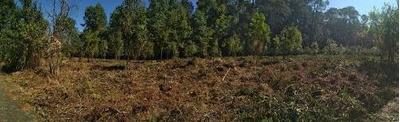 Bello Terreno Semiplano
