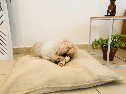 Almohadon Y Funda Para Colchón Mascota Lienzo Talle S