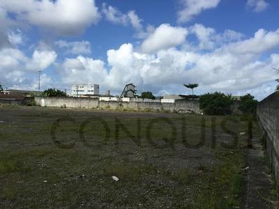 Terreno Para Venda, 32463.0 M2, Parque São Vicente - São Vicente - 3828