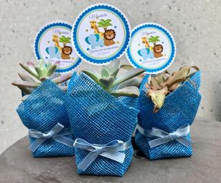 Plantas Suculentas Y Cactus Natural Evento Comunion Bautizo