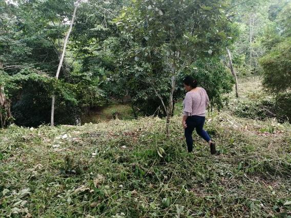 Vendo Lote En Rio Congo Chorrera