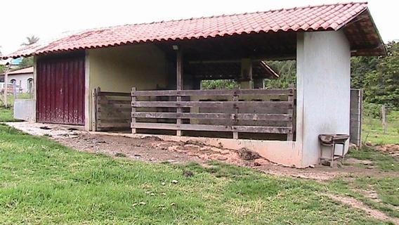 Sítio Com 3 Quartos Para Comprar No Centro Em Esmeraldas/mg - 18752