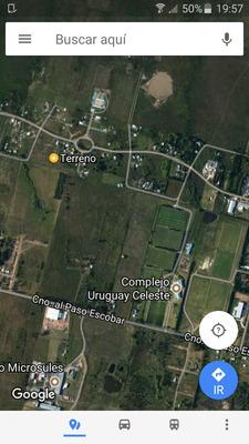 2400 Metros En Esquina; Entre Ruta 101 Y Ruta 8