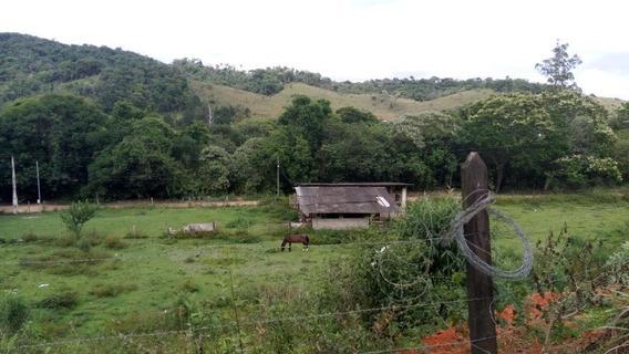 Sitio Itapeva Guararema Sp Brasil - 475