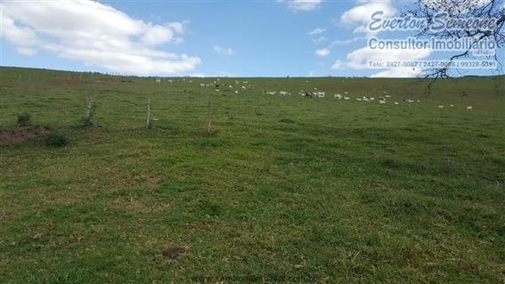 Fazendas À Venda Em Piracaia/sp - Compre O Seu Fazendas Aqui! - 1445899