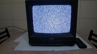 Televisor Color De Tubo 14 Con Control Remoto