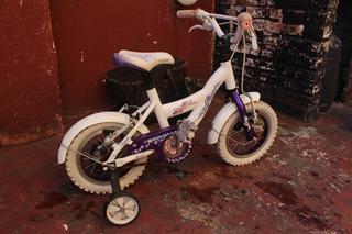 Bicicleta Infantil Raleigh Cupcake Rodado 12
