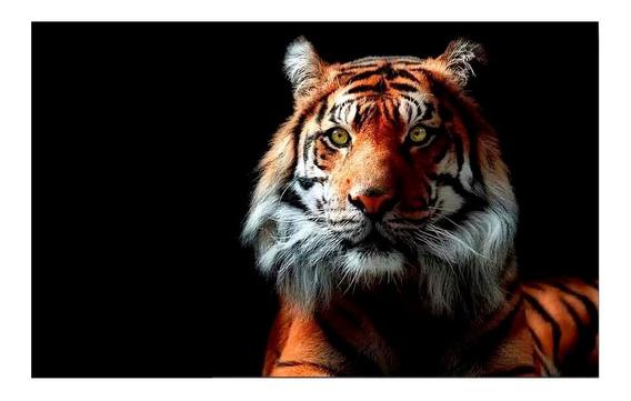 Cuadro Tigre Animales 120x70 Otros Diseños Tela Canvas