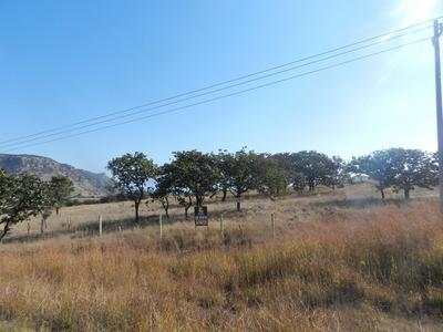 Rancho El Taray