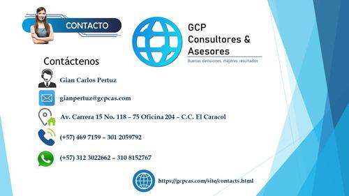 Imagen 1 de 10 de Declaracion De Renta, Contador Publico, Contabilidad, Niif