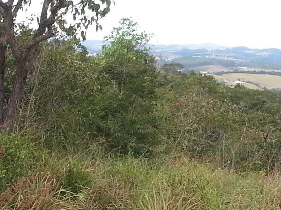 Terreno / Área Para Comprar No Pedra Do Sino Em Carandaí/mg - 767