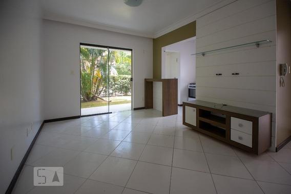 Apartamento Para Aluguel - Porto Da Lagoa, 1 Quarto, 50 - 893020074