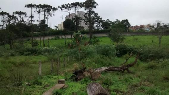 Terreno Para Venda Em Ferraz De Vasconcelos, (zona Oeste) - 2000/2133 T