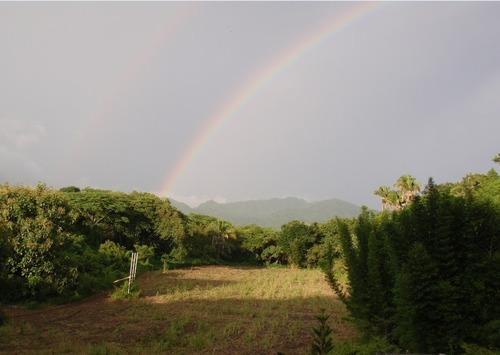 Imagen 1 de 16 de Se Vende Terreno En Punta De Mita