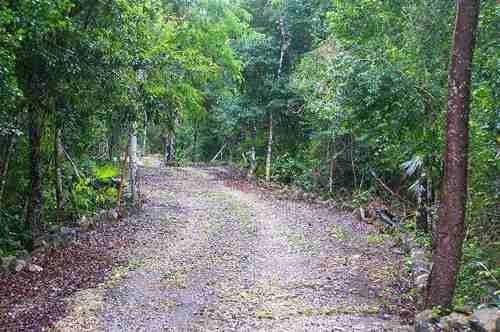 Terreno En Tulum 10,508 M2 A Precio De Oportunidad P2782