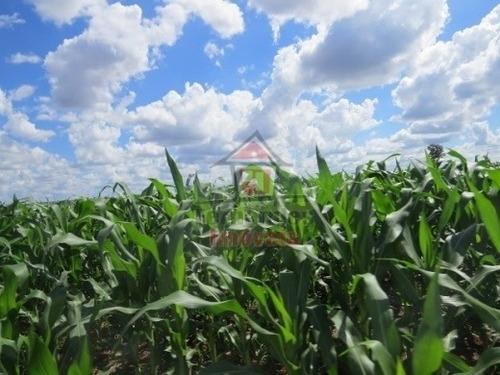 Imagem 1 de 14 de Fazenda À Venda  1.450 Há  Em Dourados/ms - Fa0138
